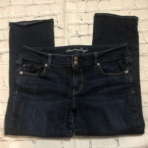 American Eagle outfitters Artist ankle jeans 16